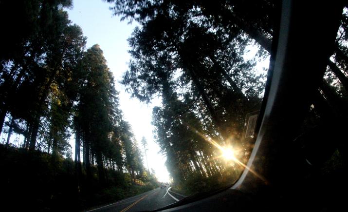 Yosemite park (10)