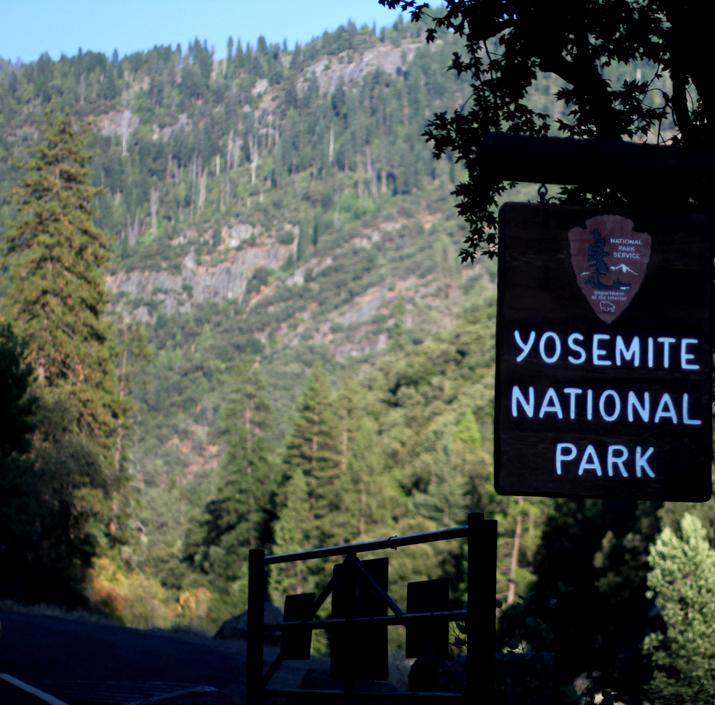 Yosemite park (16)