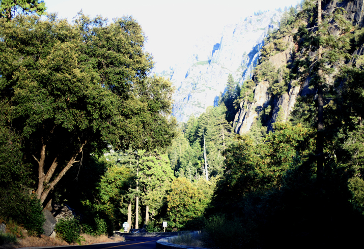 Yosemite park (7)