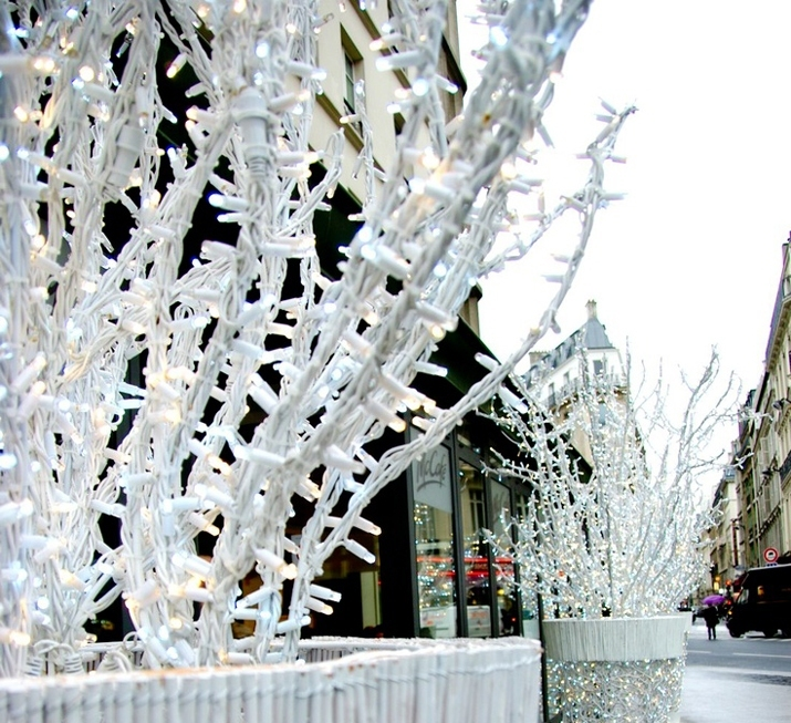 PARIS SNOW (3)1