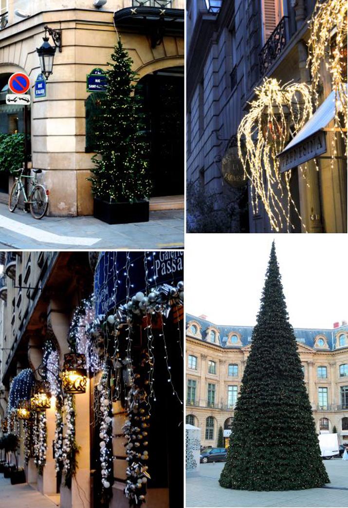PARIS WINTER (4)