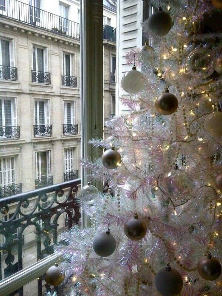 PARIS WINTER (9)