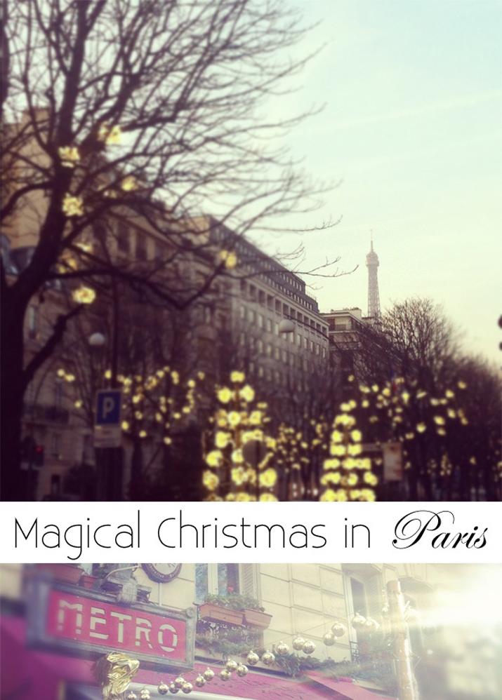 WINTER IN PARIS (3)