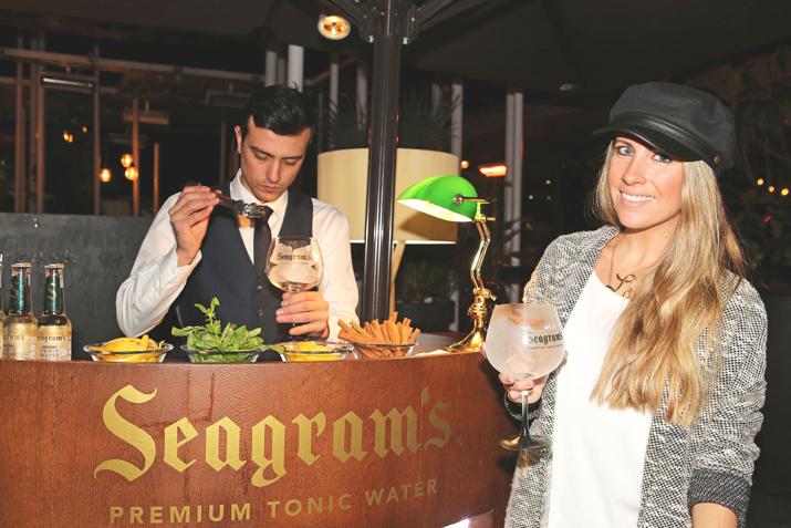 Seagrams premium tonic (3)