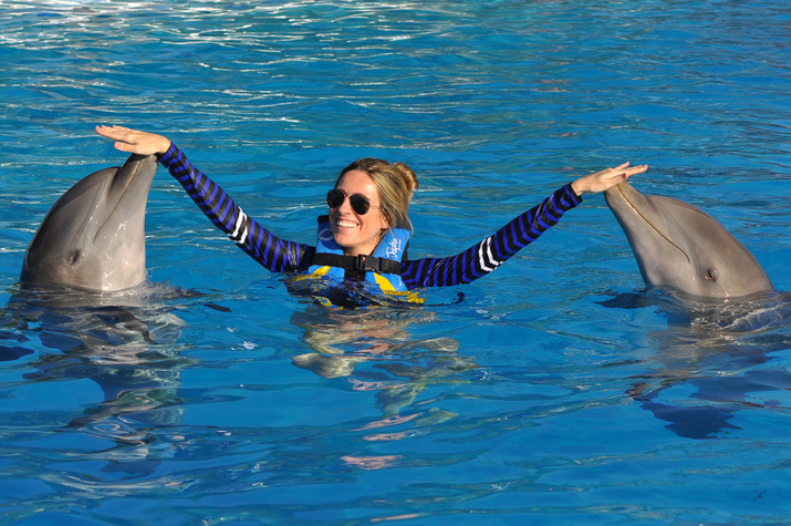 Dolphin_discovery-Monica_Sors (2)