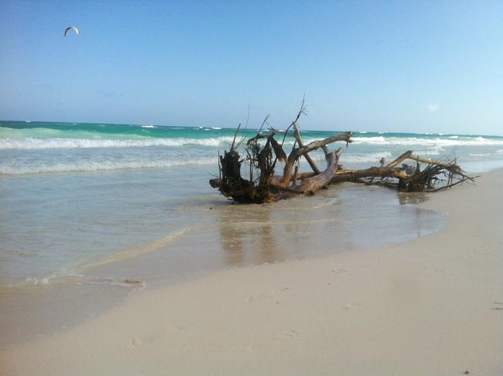 Tulum beach blogger (3)