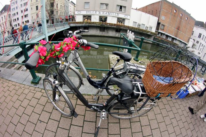 Gante_flandes (6)