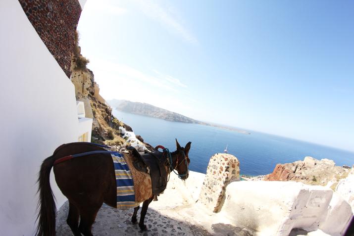 Oia_Santorini (1)