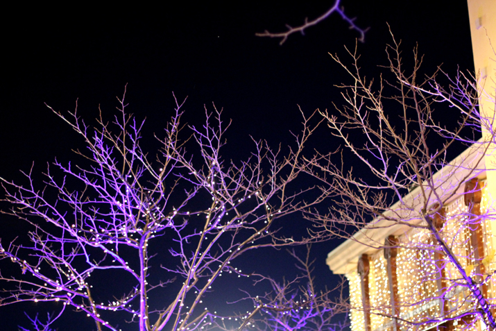Las-Rozas-Village-Navidad (8)