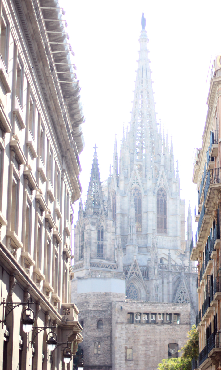 Catedral-Barcelona (2)