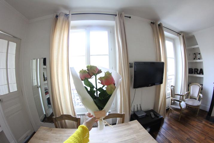 Habitat-Parisien (5)