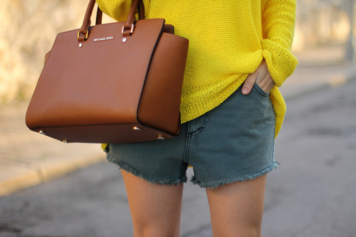 outfit-with-shorts-2015-blogger (2)