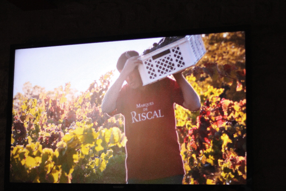 La-Rioja-bodegas (8)