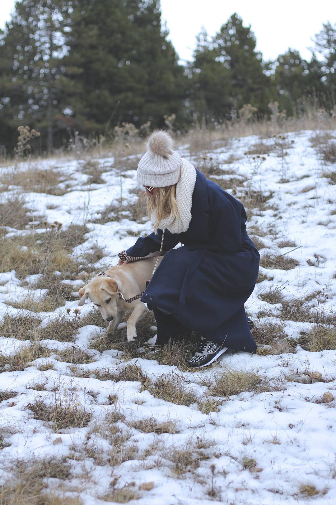 bloguera-de-moda-perro-labrador
