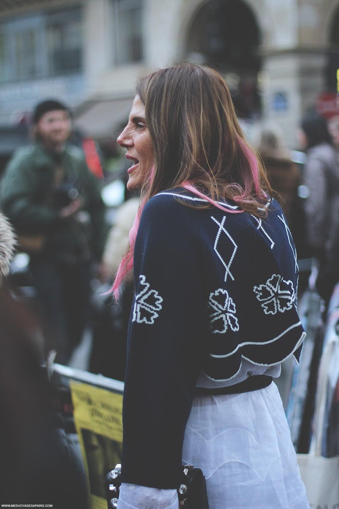 Anna-Dello-Russo-Paris-Fashion-Week-2016-street-style-fur-coat copia