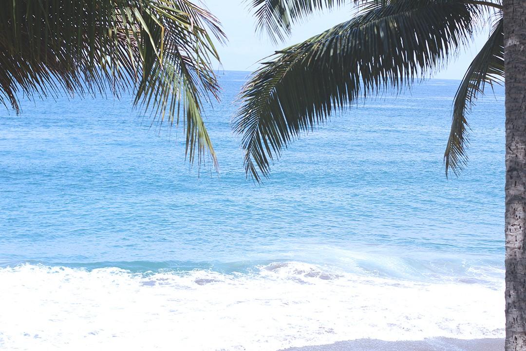 Tango-mar-costa-rica